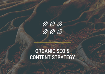 Organic SEO & Content Strategy | Carlsbad, CA