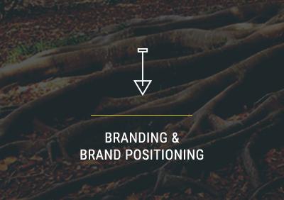 Branding & Brand Positioning Company | Carlsbad, CA