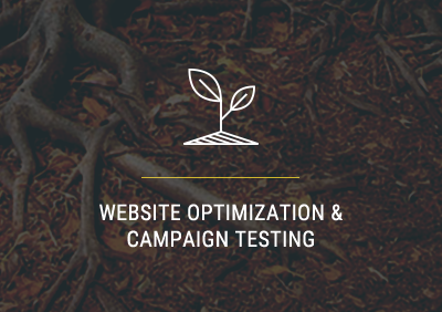 Website Optimization Company | Carlsbad, CA