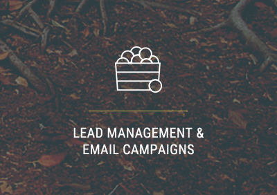 Lead Management & Nurturing | Carlsbad, CA