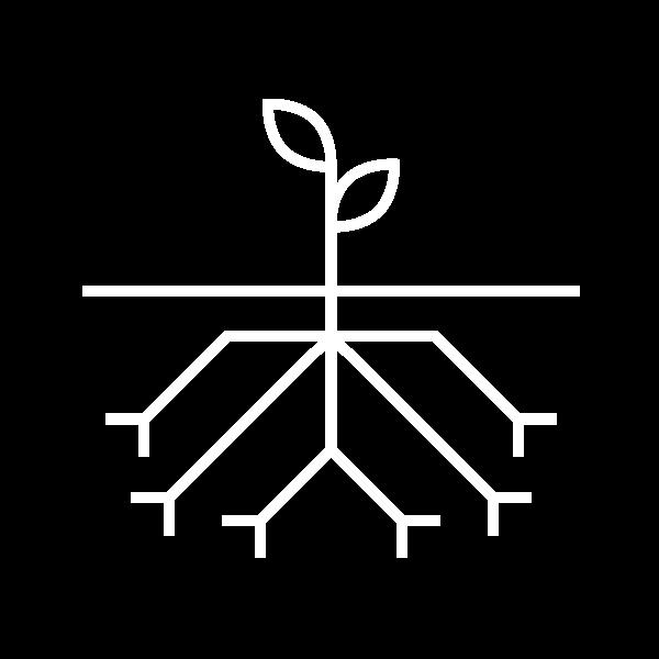 Website Design & Development Icon